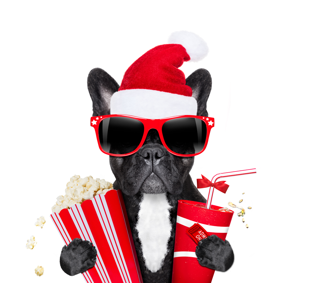 5 Christmas films your dog will love