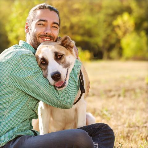 How having a dog improves your life